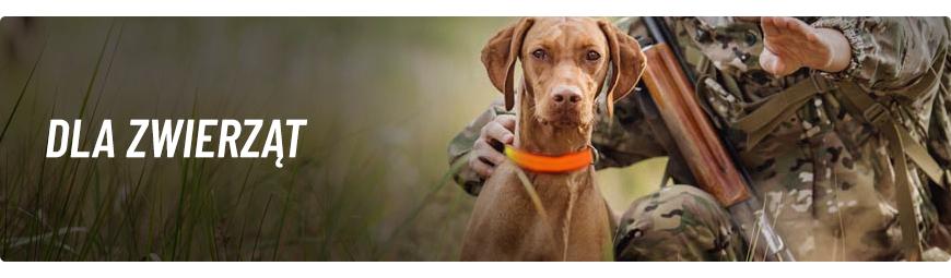 Dla psów myśliwskich i nie tylko - Trening Psa - dizkaknieja.pl